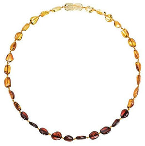 "Powell's Owl's Amber Teething Necklace 12.5"" - Beans Polished Rainbow"