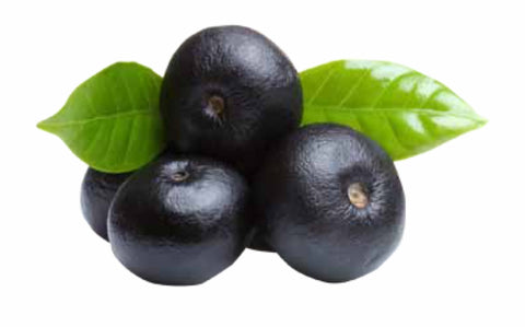 acai plum fragrance oil by aroma delights
