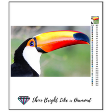 Load image into Gallery viewer, Amazing Toucan