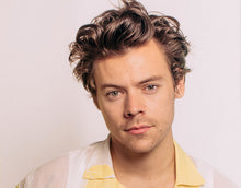Load image into Gallery viewer, Harry Styles