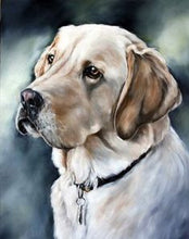 Load image into Gallery viewer, Labrador Retriever