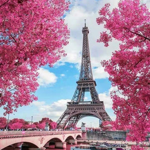 Spring In Paris With The Eiffel Tower - France