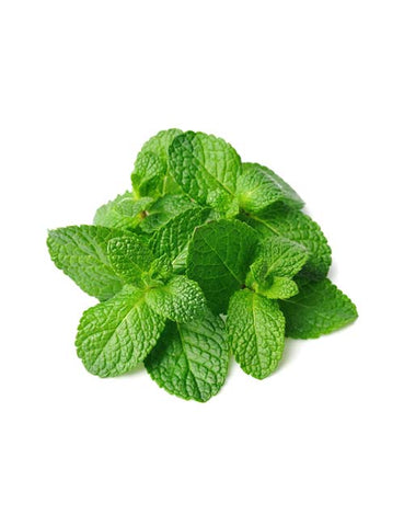 Mint leaves - Naturals
