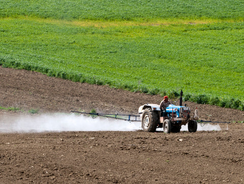 Hemp Soil Requirement, Approved Pesticides, Nutrients