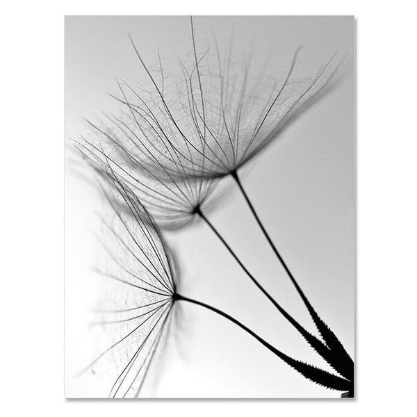 Dandelion Flower Canvas Painting Modern Black White Art Pictures for Home Decoration Living Room Abstract Wall Poster No Frame - Avenila - Interior Lighting, Design & More