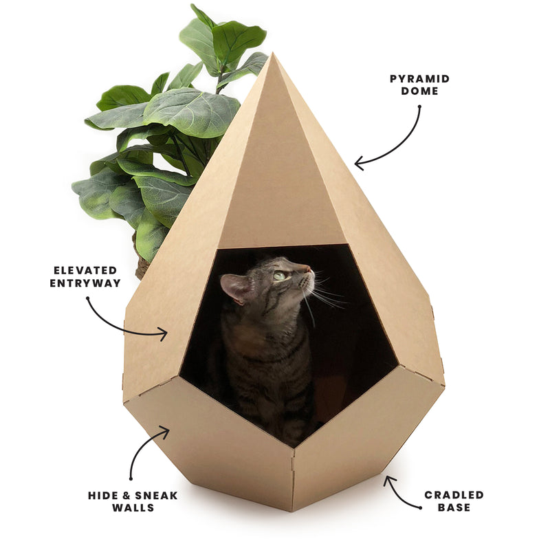 Water Gem  –  Cardboard Cat House