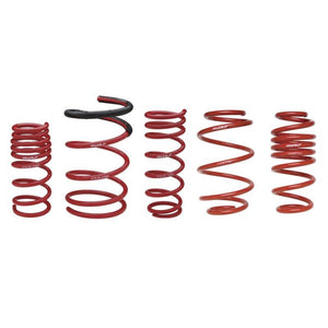 "SKUNK2 8K STRAIGHT RACE SPRINGS 6""L - 2.5""ID"