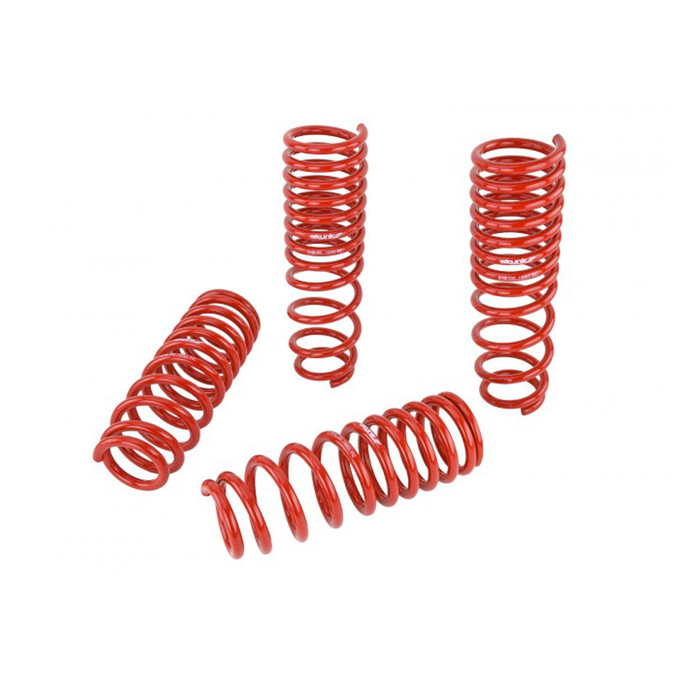 SKUNK2 LOWERING SPRINGS 96-00 HONDA CIVIC EK
