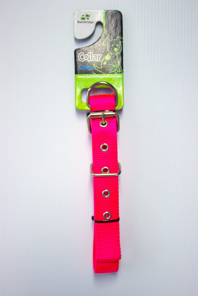 DOG COLLAR WEBBING 50CM ASSORTED COLOURS