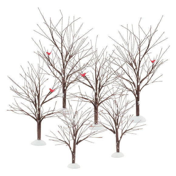 Bare Branch Tree - Set of 6