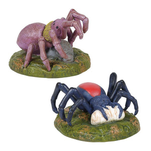 Spider Phobia - Set of 2