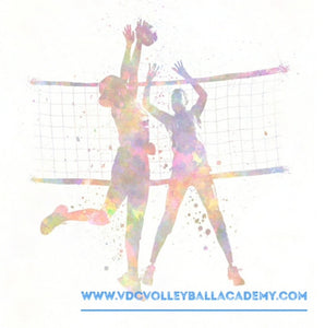 VDC Pro Volleyball Camp, 11-14 years