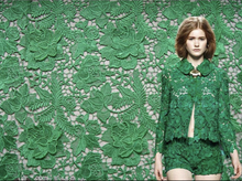 Load image into Gallery viewer, DRAGON ROSE LACE JACKET