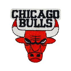 VINTAGE CHICAGO BULLS PATCH