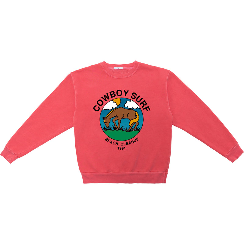 BEACH CLEANUP SWEATSHIRT
