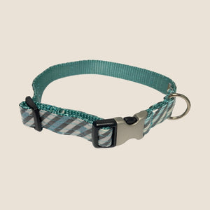 Mimi Green Laminated Cotton Collar - Agave