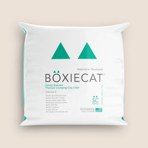 BoxieCat Cat Litter BoxieCat Gently Scented Premium Clumping Clay Litter