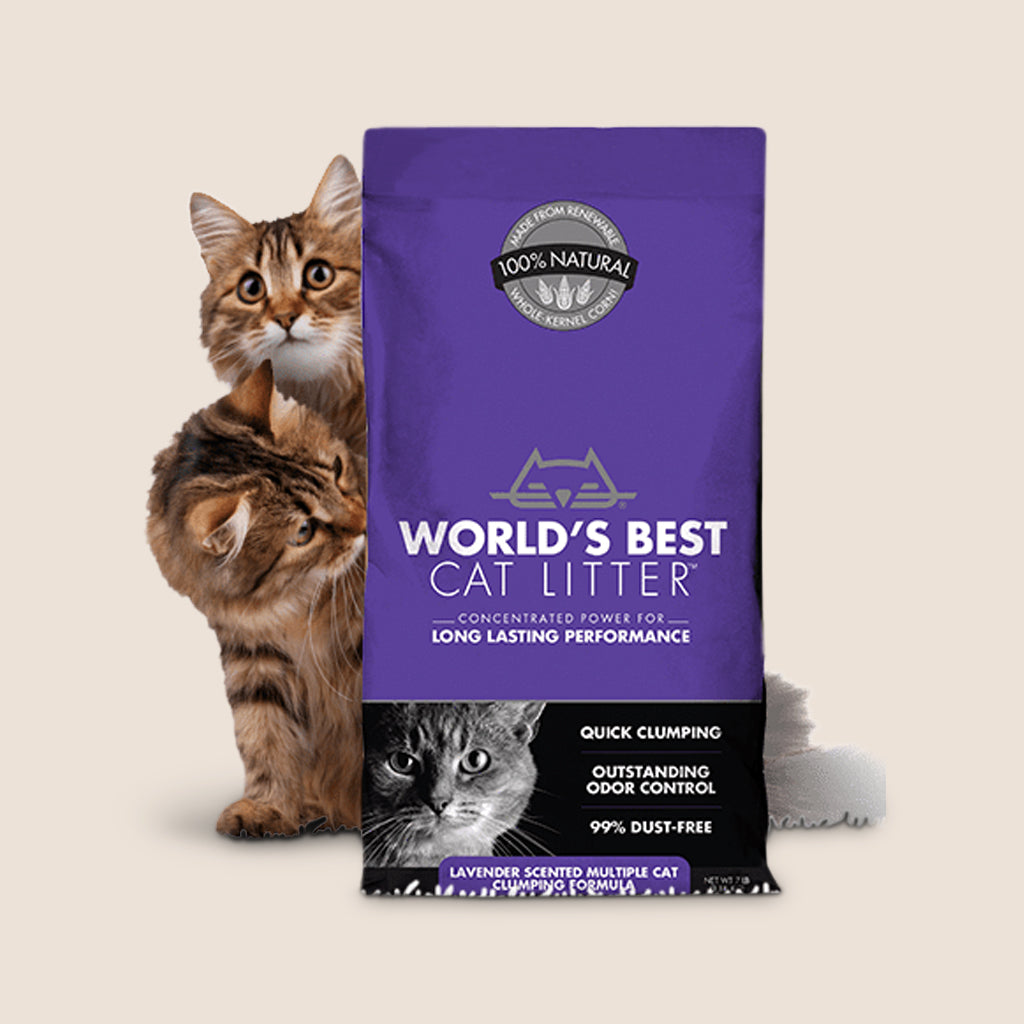 World's Best Cat Litter World's Best Lavender Scented Multi-Cat Clumping Litter
