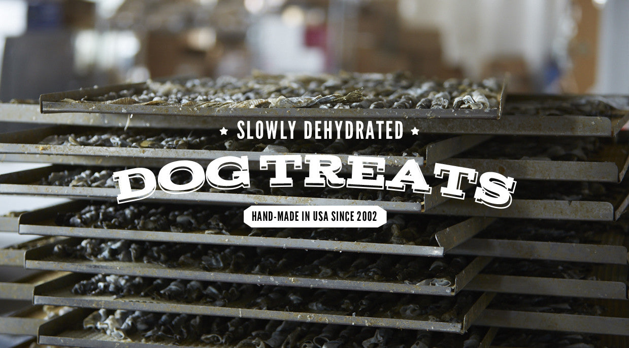 slowly dehydrated dog treats