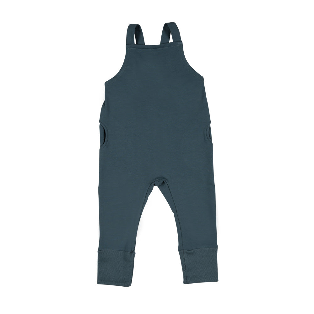 Don't Grow Up - Blue Salopette Dungarees (last two sz 12-18M & 4-5Y)