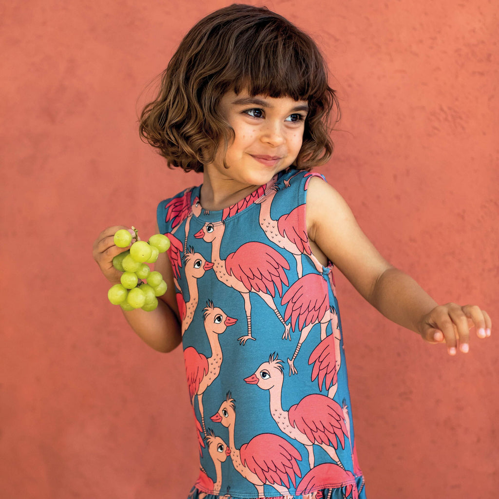 Dear Sophie - Organic Lady Ostrich Blue Dress (last one sz 18-24M)