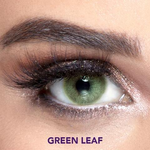 LENSEE Natural Collection - Lentilles de Contact Annuelles (12 mois)