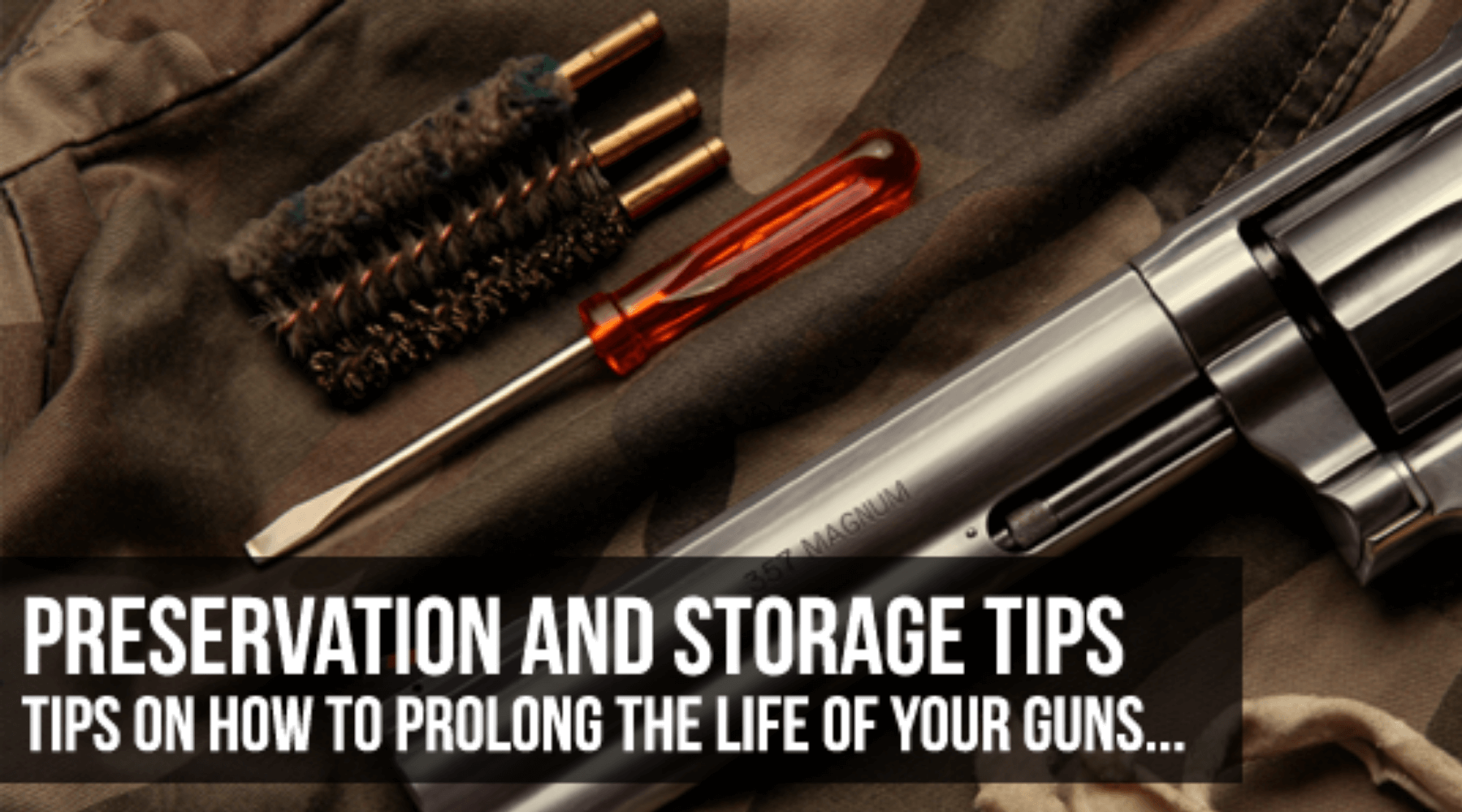 preservation-and-storage-guns