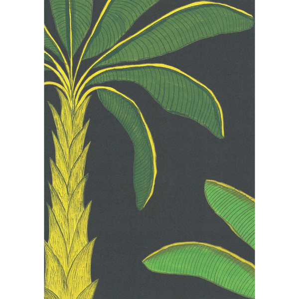 Tropical | Colour: Mallard Green
