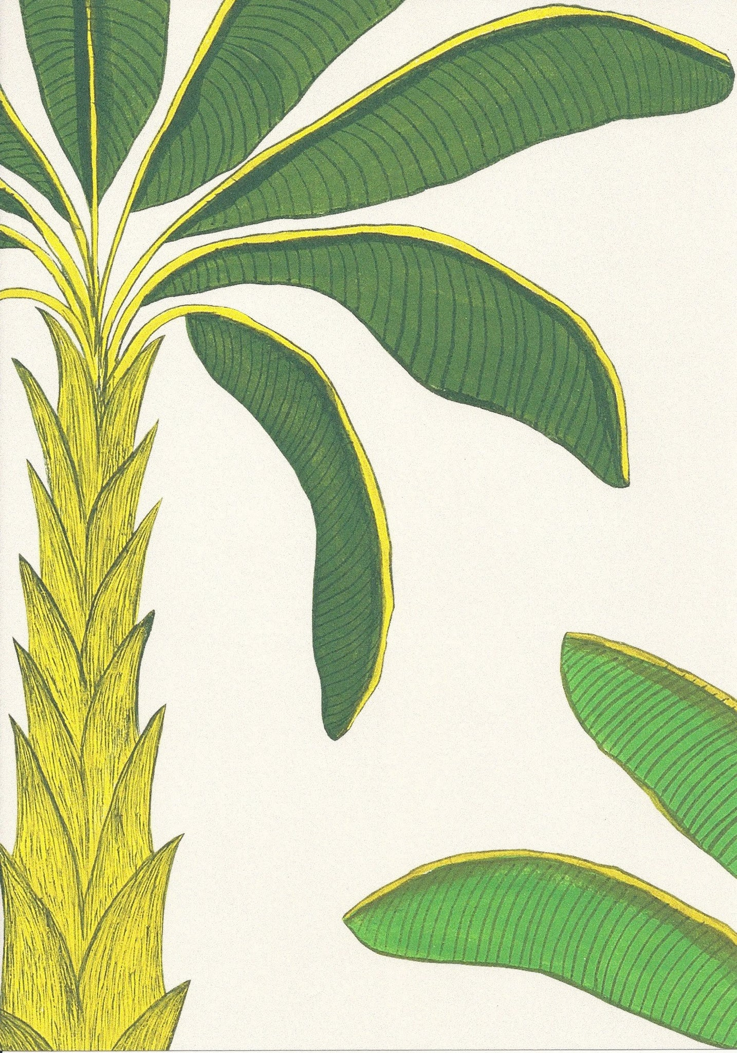 Tropical Wallpaper SAMPLE A4 size (approx)| Colour: Porcelain Earth White
