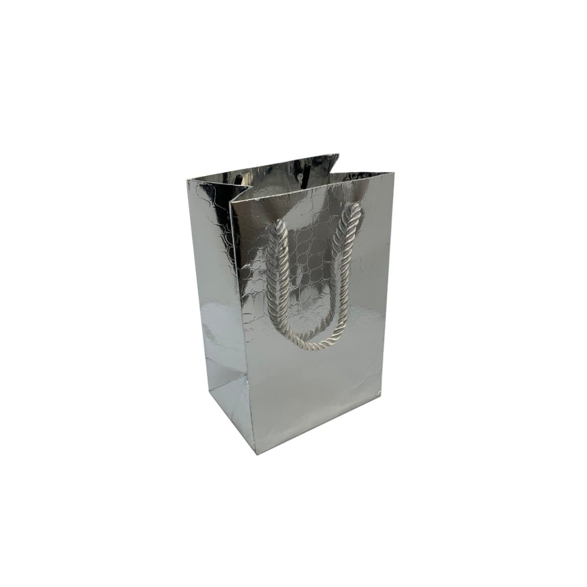 Paper Gift Bag, Small 12 x 16 x 8.5 cm, Croco Glossy, Silver