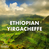 #1 Best Seller - Ethiopian Yirgacheffe Coffee, Organic