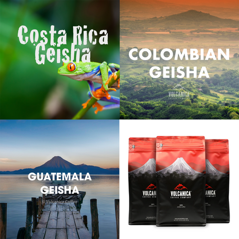 Geisha Coffee Bundle, 3 Pack - Volcanica Coffee