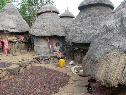 Coffee Drying, Ethiopia