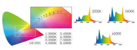 Photometric Data 4