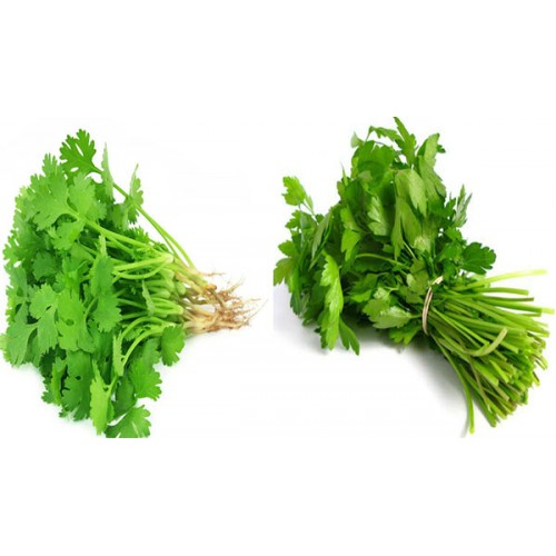 Mix Cilantro / Perejil - Atado - The Market Delivery