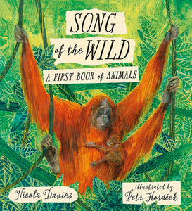 Song of the Wild: A First Book of Animals - Kool Skool The Bookstore