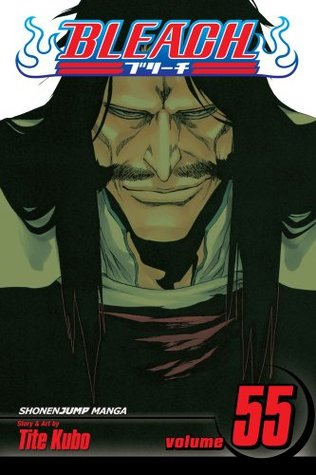 Bleach, Vol. # 55 : The Blood Warfare -  Paperback