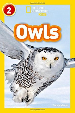 National Geographic Reader Level 2 : Owls - Paperback