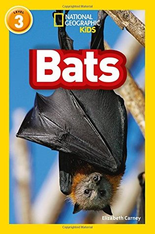National Geographic Reader Level 3 : Bats - Paperback