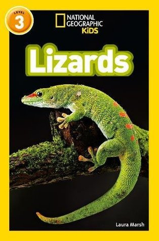 National Geographic Reader Level 3 : Lizards - Paperback