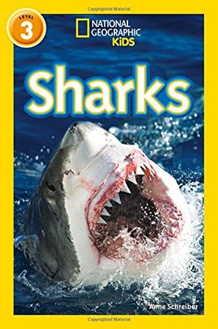 National Geographic Reader Level 3 : Sharks - Paperback