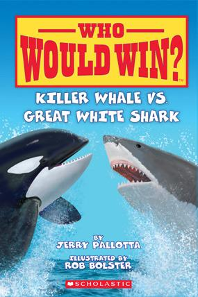 Who Would Win? : Killer Whale Vs. Great White Shark - Paperback - Kool Skool The Bookstore