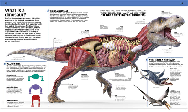 Knowledge Encyclopedia Dinosaur!: Over 60 Prehistoric Creatures as You've Never Seen Them Before - Hardback
