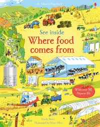Usborne See Inside Where Food Comes From - Kool Skool The Bookstore