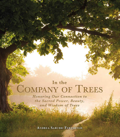 In the Company of Trees: Honoring Our Connection to the Sacred Power, Beauty, and Wisdom of Trees - Hardback