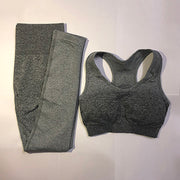 Ombre Seamless Sports Suit