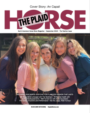THE PLAID HORSE