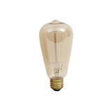 Squirrel Cage Light Bulb
