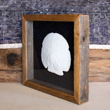 Shadowbox with Single Sand Dollar