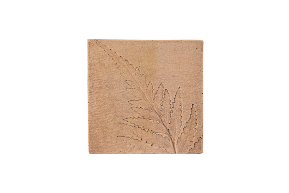 Outdoor Tile Ocker Fern 1
